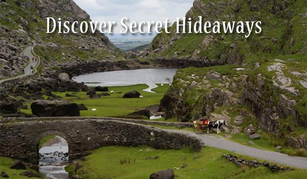 With Our Expert Knowledge & Insight We Help You Discover the Hidden Gems.