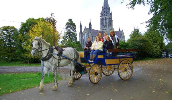 Horse & Carriage Ride, Killarney
