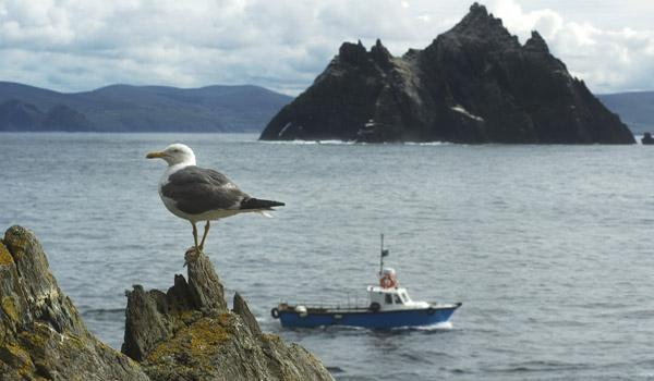 The Skellig Islands County Kerry - Film Location in 'Star Wars: The Force Awakens'