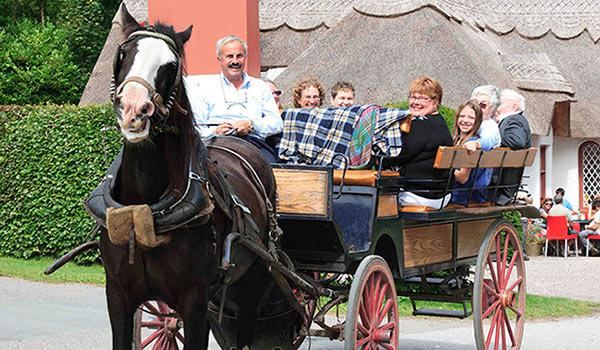 Our Horse & Carriage experience to Ross Castle is fun for the whole family to enjoy.
