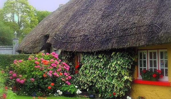 Thatched Cottage in Adare Heritage Village