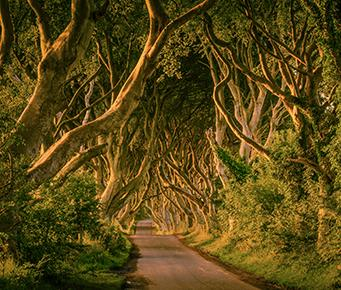 6-Night Game of Thrones Tour
