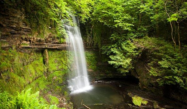 glencar waterfall and surrounding green trees